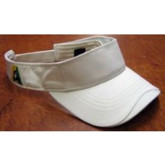 Goodridge BA Visor